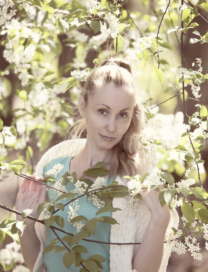 Portret van de mooie vrouw dichtbij een witte vogelkers, wijnoogst stock afbeeldingen