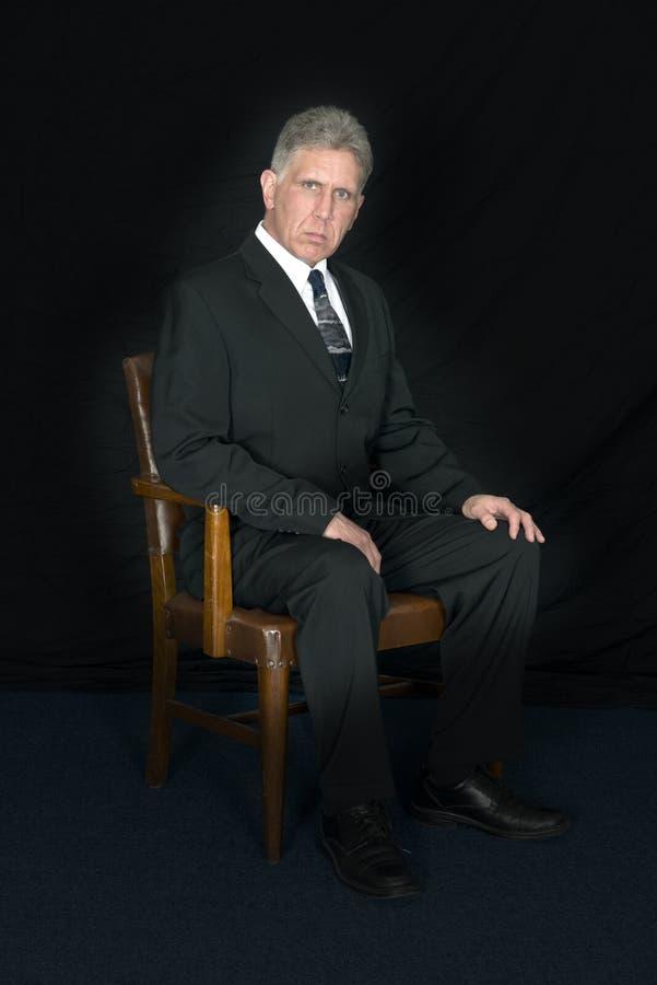 Portret van de Uitvoerende macht, CEO, Werkgever, Leider, Leadersh stock foto's