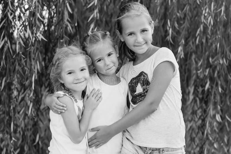 Portret van drie jonge neven op wilg stock foto