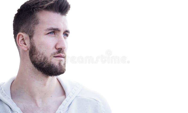 Portret van een aantrekkelijke mens met baard royalty-vrije stock afbeelding