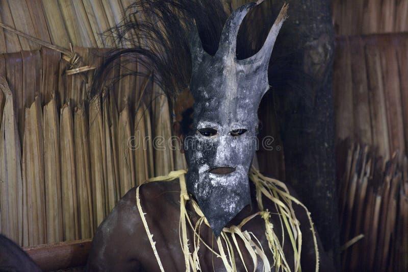 Portret van een Asmat-mens in masker stock afbeeldingen
