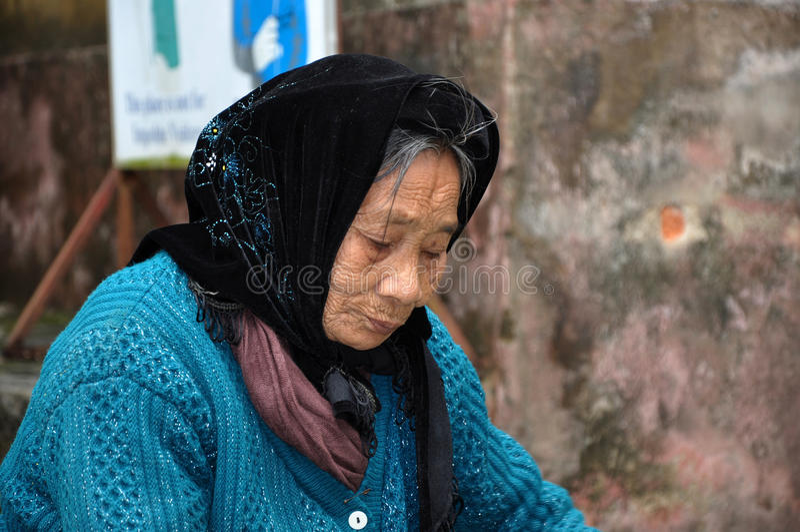 Portret van een bejaarde Vietnamese vrouw met een sjaal royalty-vrije stock afbeelding