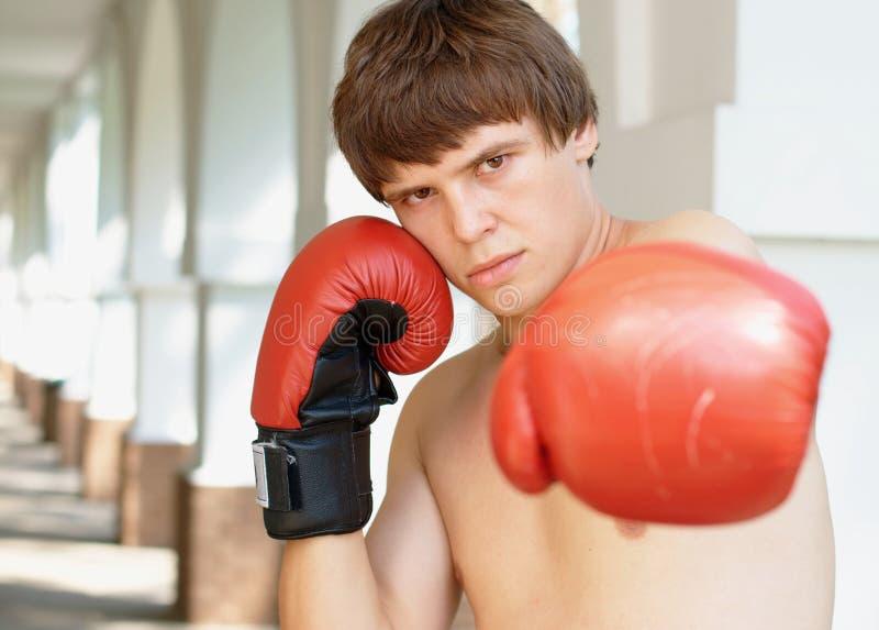 Portret van een bokser stock afbeelding