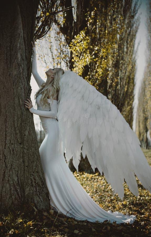 Portret van een elegante, blonde engel stock foto