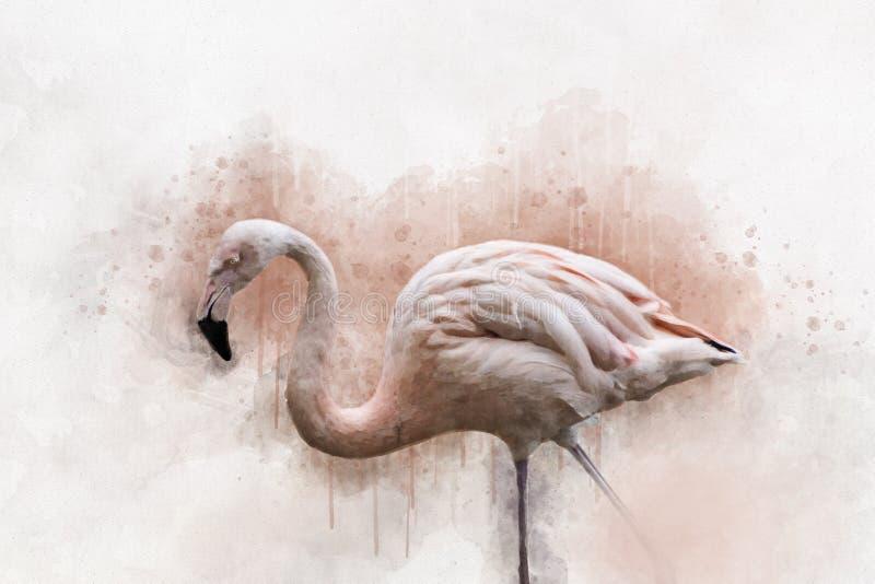 Portret van een Flamingo, waterverf het schilderen Rode flamingo Phoenicopterus ruber, zo?logische illustratie, handtekening stock foto