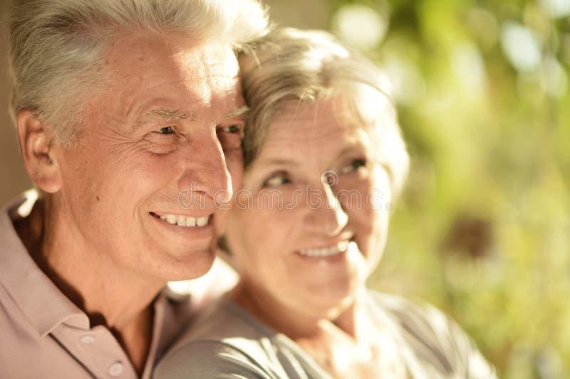 Portret van een gelukkig hoger paar stock foto's