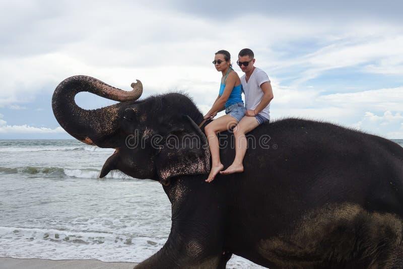 Portret van een gelukkig jong paar op een olifant met boomstam omhoog op de achtergrond van een tropisch oceaanstrand royalty-vrije stock afbeeldingen