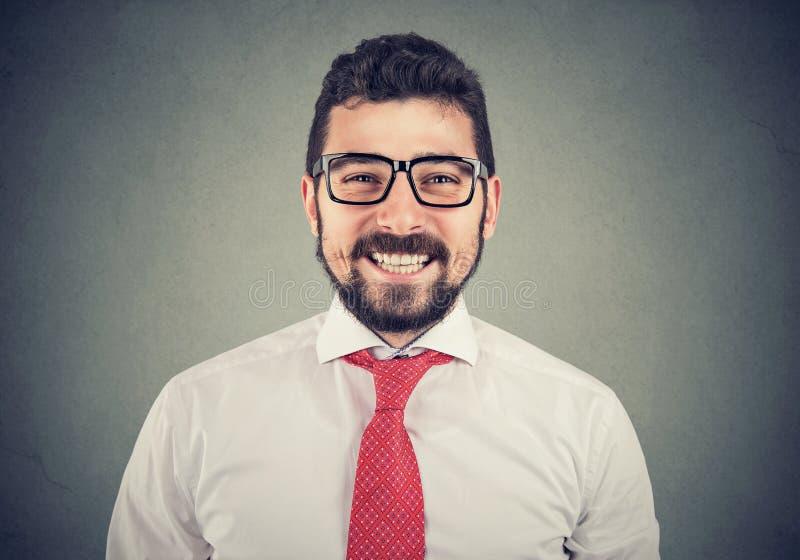 Portret van een gelukkige glimlachende zakenman stock fotografie