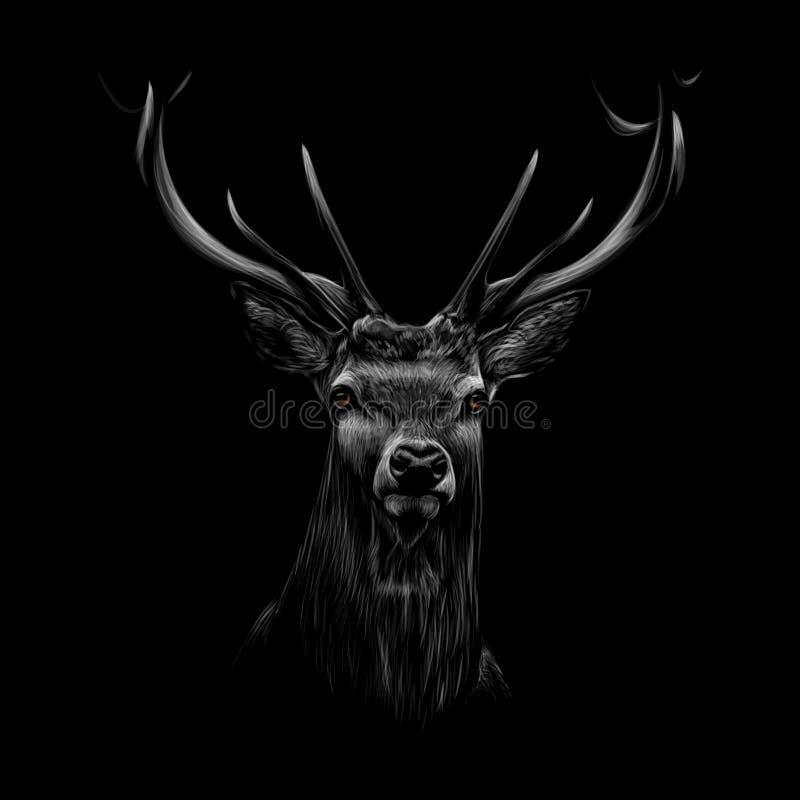 Portret van een hertenhoofd op een zwarte achtergrond stock illustratie