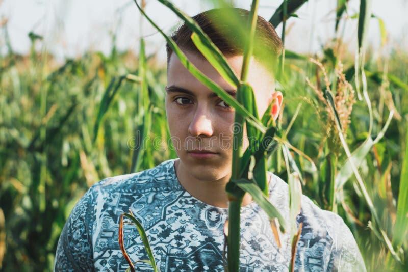 Portret van een jonge jongen in cornfield stock foto