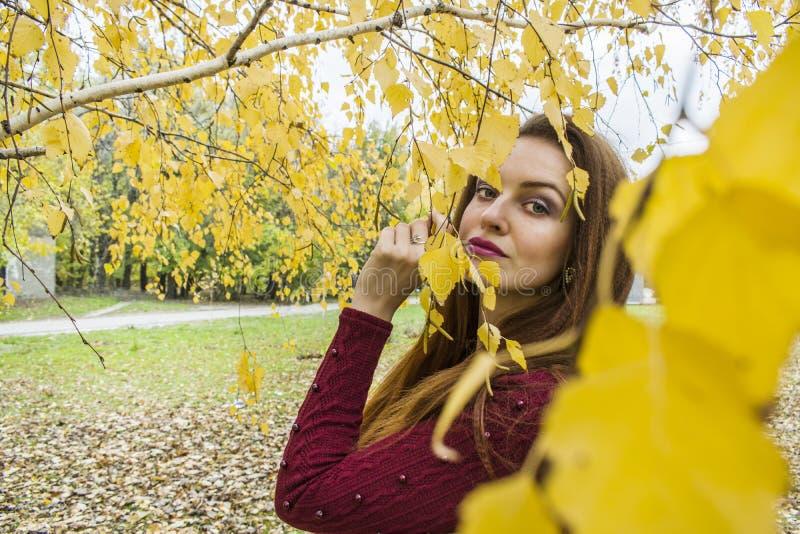 Portret van een jonge vrouw in de herfst stock fotografie
