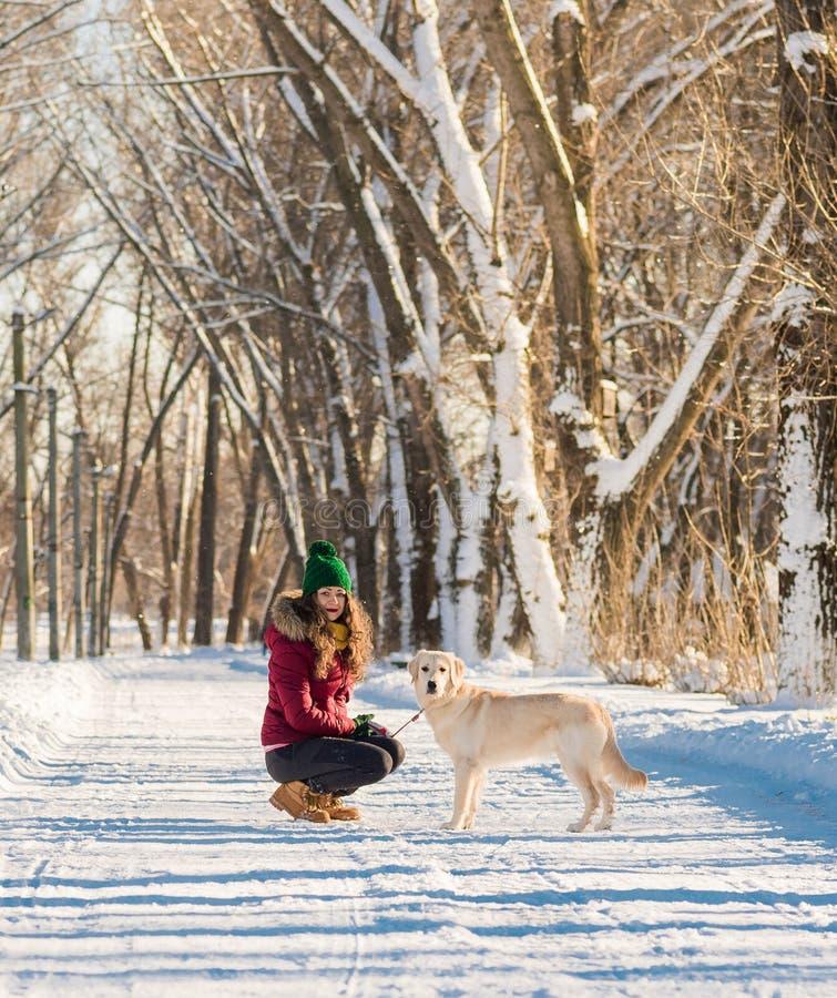 Download Portret Van Een Jonge Vrouw Met Hond Op De Wintergang Stock Foto - Afbeelding bestaande uit bont, park: 107700226