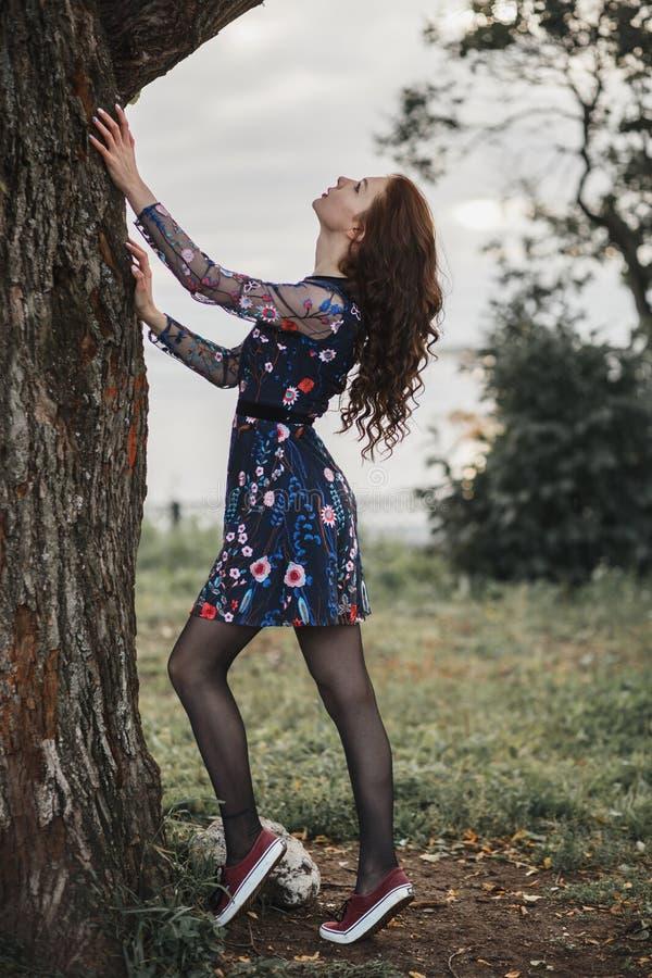 Portret van een krullend meisje in een de herfstpark Slanke vrouw met het genieten van de herfst van aard dichtbij oude boom Conc royalty-vrije stock afbeelding