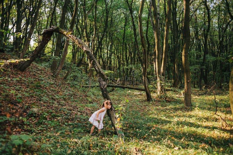 Portret van een meisje in het hout emoties stock fotografie