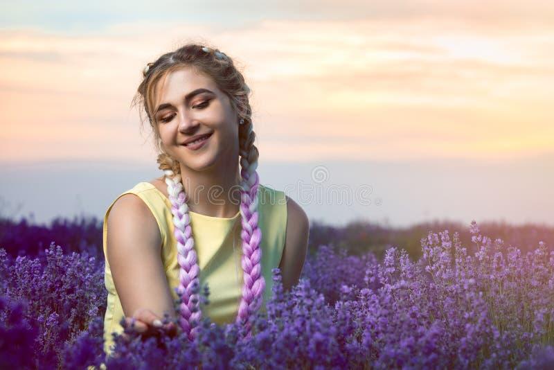 Portret van een mooi meisje met lange vlechten op een lavendelgebied Scheurt van een twijg van lavendel Zonsondergang op de achte royalty-vrije stock afbeelding
