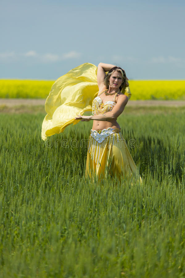 Portret van een mooie buikdanser stock afbeelding