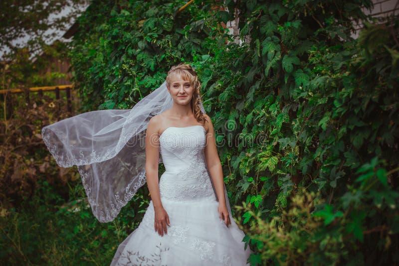 Portret van een mooie glimlachende bruid stock afbeeldingen