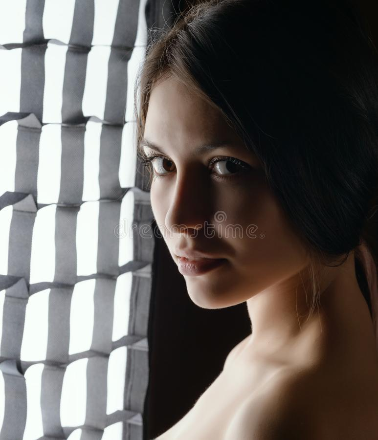Portret van een mooie jonge brunette stock afbeeldingen