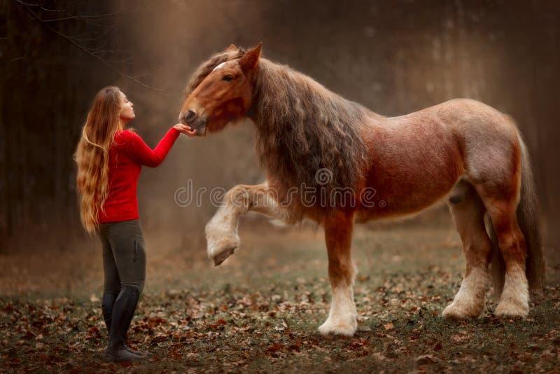 Portret van een mooie jonge vrouw met Tinker-paard royalty-vrije stock foto's