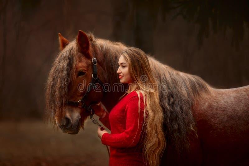 Portret van een mooie jonge vrouw met Tinker-paard stock afbeeldingen