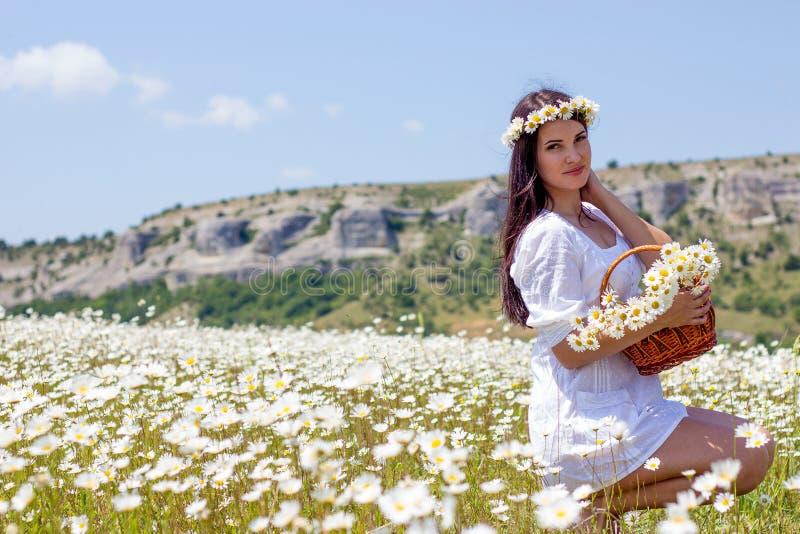 Portret van een mooie jonge vrouw op kamillegebied Gelukkig meisje dat madeliefjes verzamelt Een meisje dat op een gebied van kam stock foto