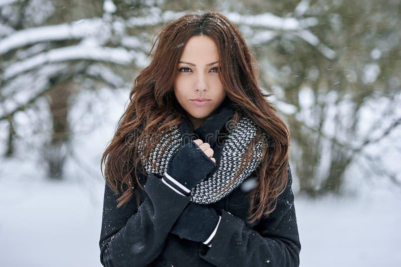 Portret van een mooie vrouw in de winter stock afbeeldingen