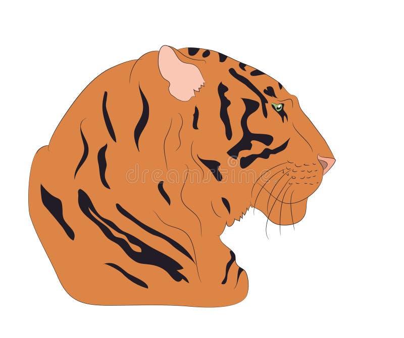 Portret van een oranje tijger, vector stock illustratie