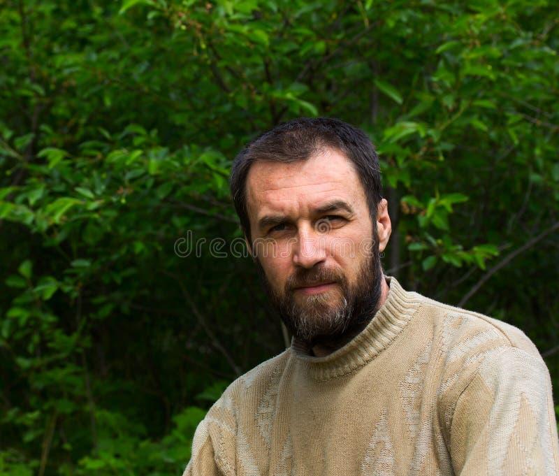 Portret van een peinzend volwassen mannetje royalty-vrije stock afbeelding