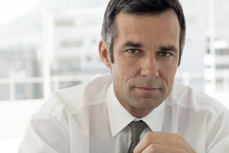 Portret van een rijpe collectieve zakenman - sluit omhoog stock afbeeldingen