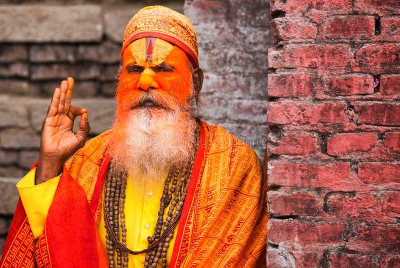 Portret van een sadhu stock fotografie