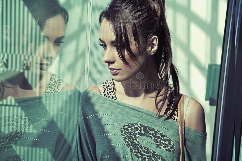 Portret van een schoonheidsbrunette stock afbeelding