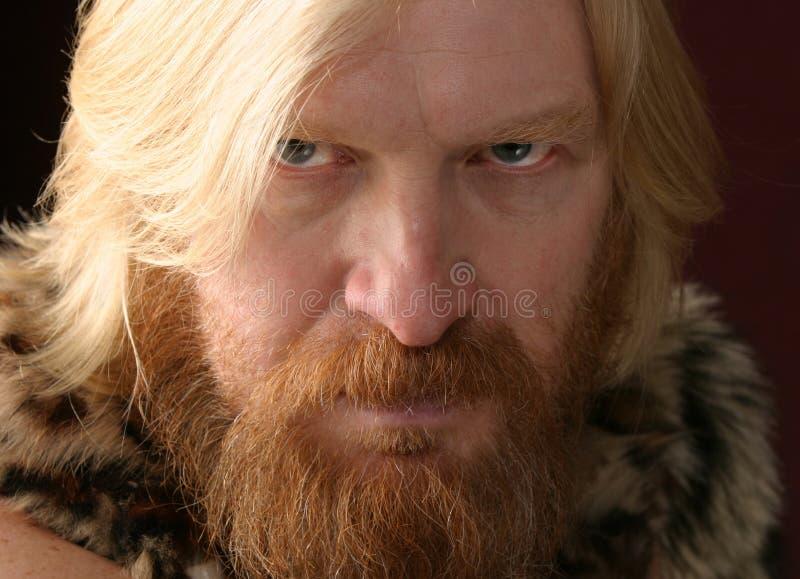 Portret van een volwassen mannetje stock foto's