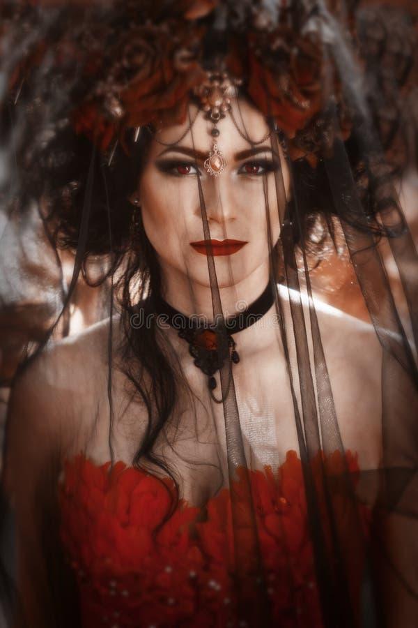 Portret van een vrouw met een sluier stock afbeeldingen