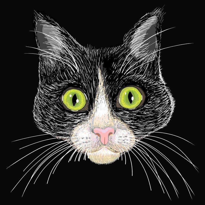 Portret van een zwart-witte kat met groot groen e royalty-vrije illustratie
