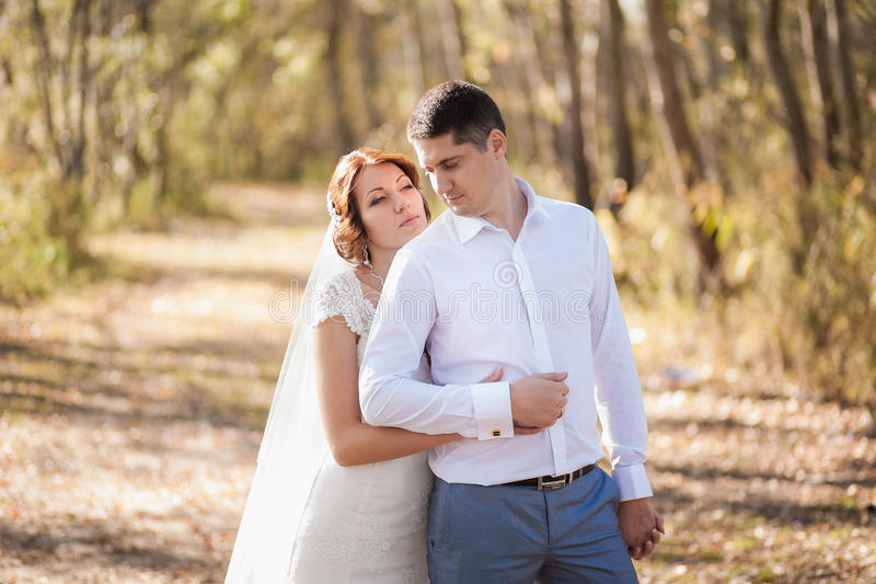 Portret van enkel gehuwd huwelijkspaar gelukkige bruid, bruidegom die zich op strand bevinden, kussend, glimlachend, lachend, heb stock afbeeldingen
