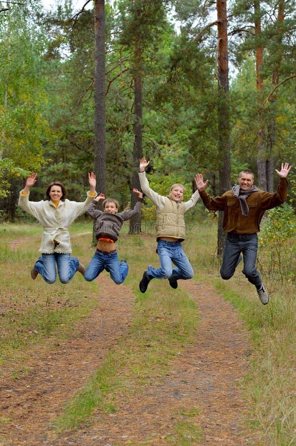 Portret van familie van vier in park stock foto's