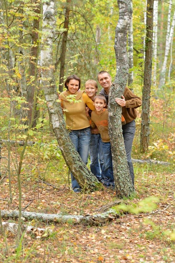 Portret van familie van vier in park stock afbeelding