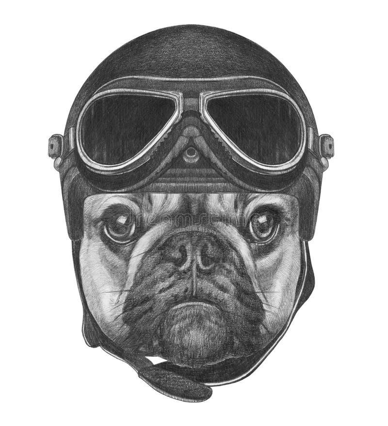 Portret van Franse Buldog met Helm stock illustratie