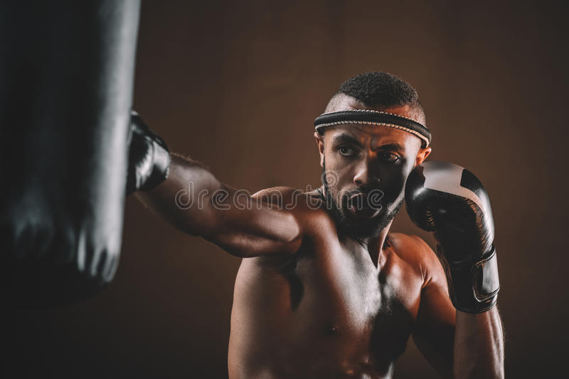 Portret van geconcentreerde muay Thaise vechter het praktizeren schop op ponsenzak stock afbeelding