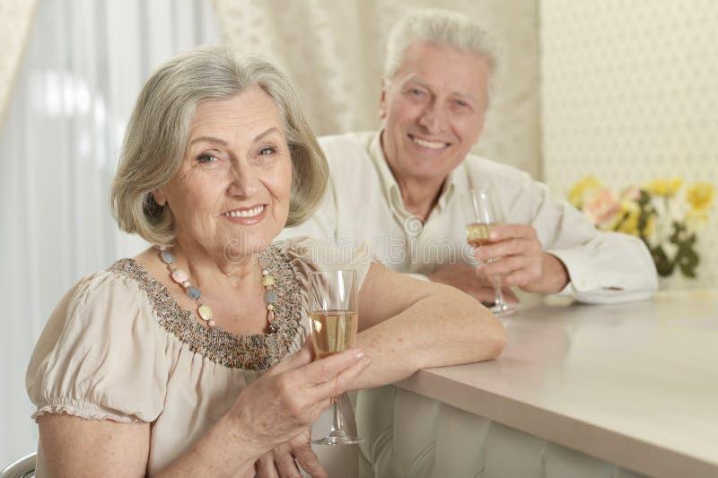 Portret van gelukkig hoger paar met wijn stock fotografie
