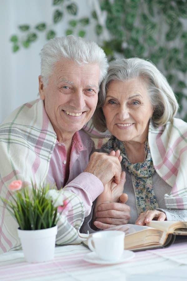 Portret van gelukkig mooi hoger paar die thuis stellen stock fotografie