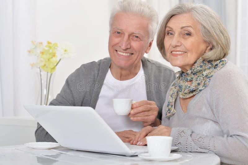Portret van gelukkige hogere boekhouders die met laptop werken stock fotografie