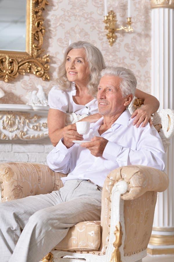 Portret van gelukkige hogere paar het drinken thee in comfortabele woonkamer stock afbeelding
