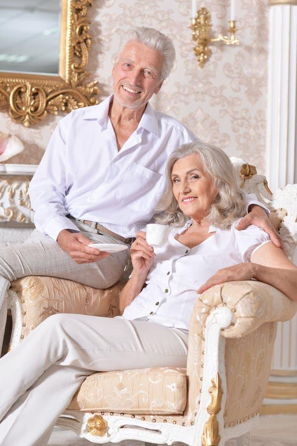 Portret van gelukkige hogere paar het drinken thee in comfortabele woonkamer royalty-vrije stock afbeelding
