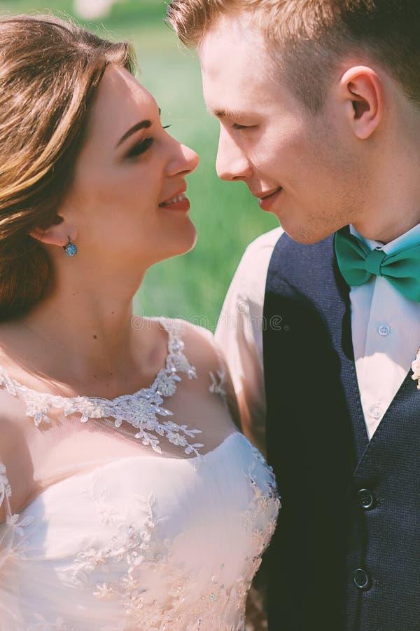 Portret van glimlachend echtpaar bij zonnige dag stock afbeeldingen