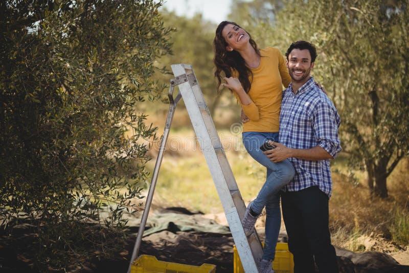 Portret van glimlachend paar met ladder bij olijflandbouwbedrijf royalty-vrije stock foto's