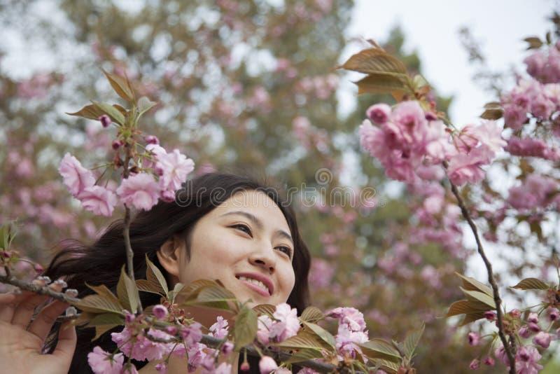 Portret van glimlachende en rustige jonge vrouw door mooie roze bloesems, in het park in de lente royalty-vrije stock foto's