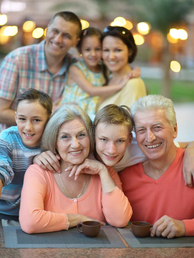 Portret van grote gelukkige familie stock afbeeldingen