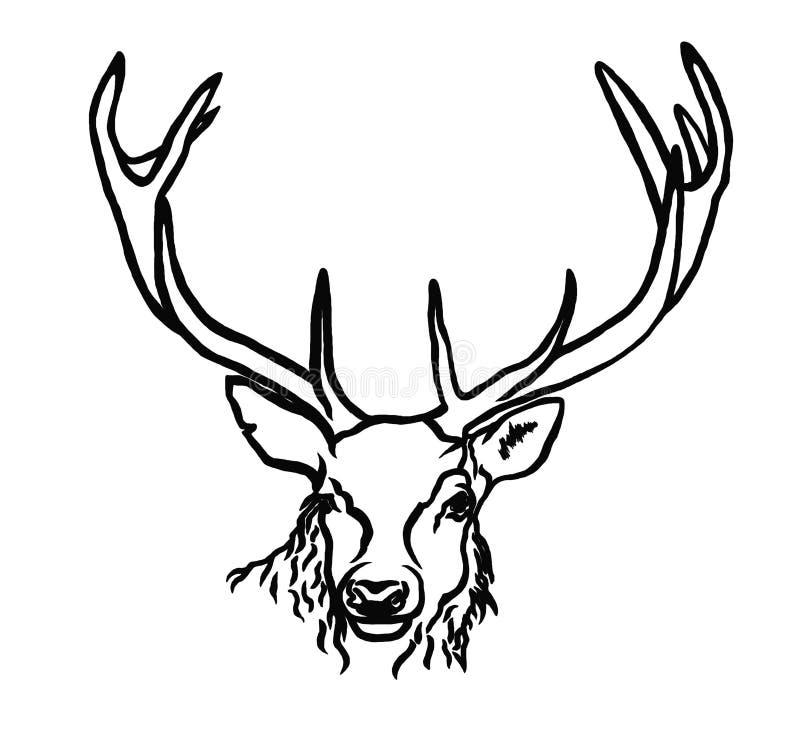 Portret van herten stock illustratie