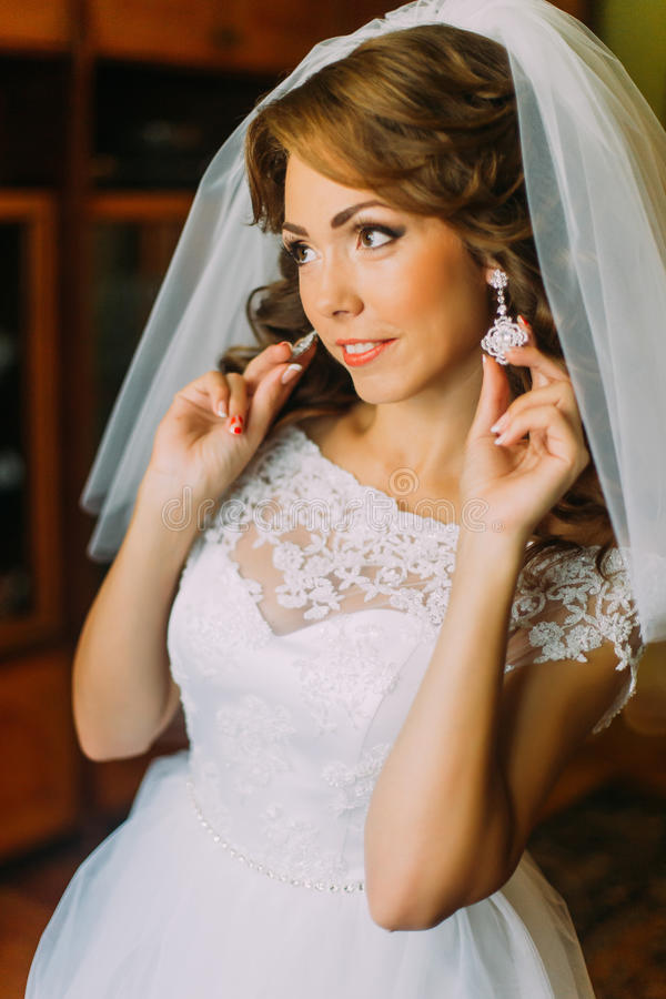 Het Mooie Portret Van De Bruid Stock Afbeelding